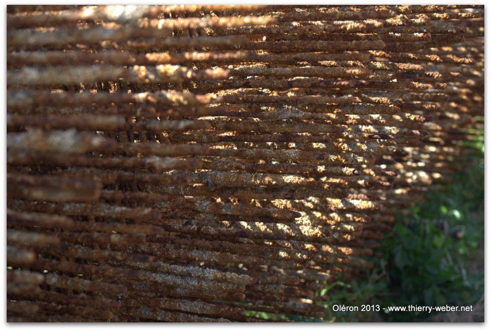 Escale à Oléron - Photos Thierry Weber Photographe La Baule Guérande