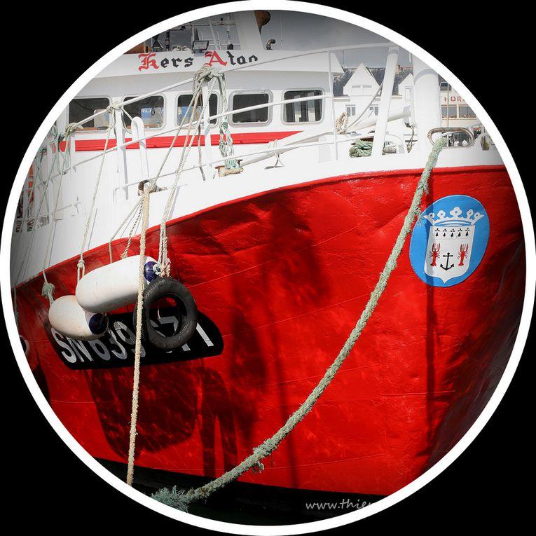 Album - Hublots sur la Turballe
