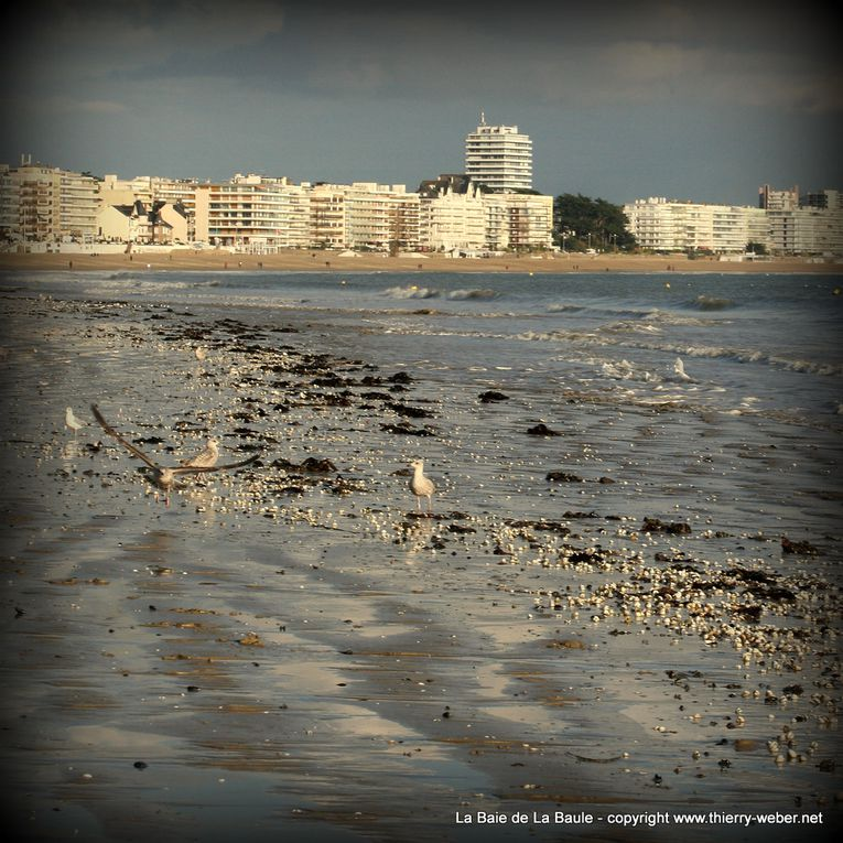 Album - La Baie de La Baule