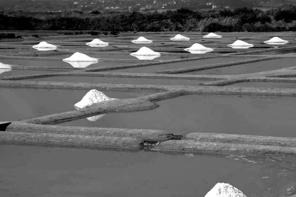 Album - Les Marais-salants de Guerande en noir et blanc