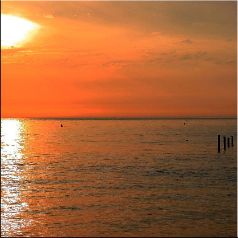 Album - Les carrés de Soleil