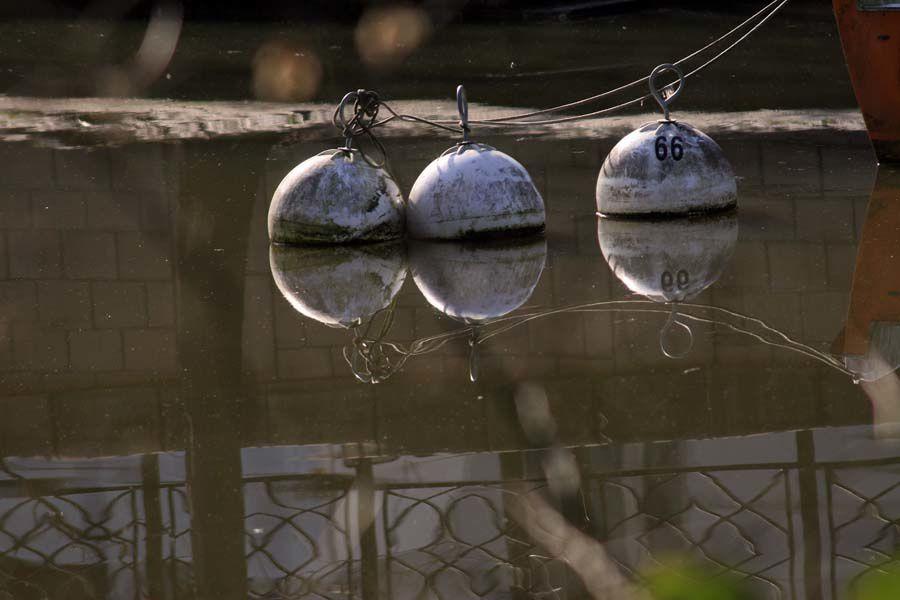 Les Bords de l'Erdre à Nantes - Photos Thierry Weber Photographe La Baule Guérande