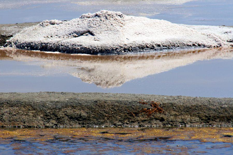 Terre de sel - Les marais salants de Guérande