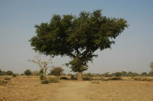 Album - BURKINA-FASO-couleur2