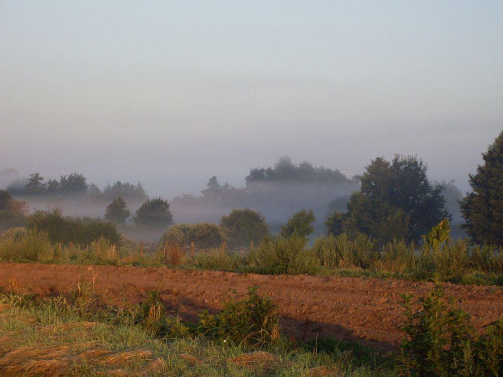 Auxonne, Dole, Carcassonne... mes paysages préférés.