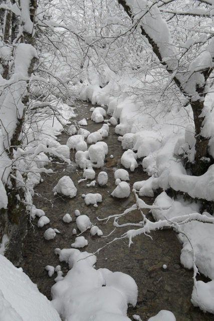 trop d'images sur l'album ski , voici donc l'année 09 10 sur les planches hommage au dieu peuf  car god is a snow man vous pouvez voir les albums sous forme de diaporama