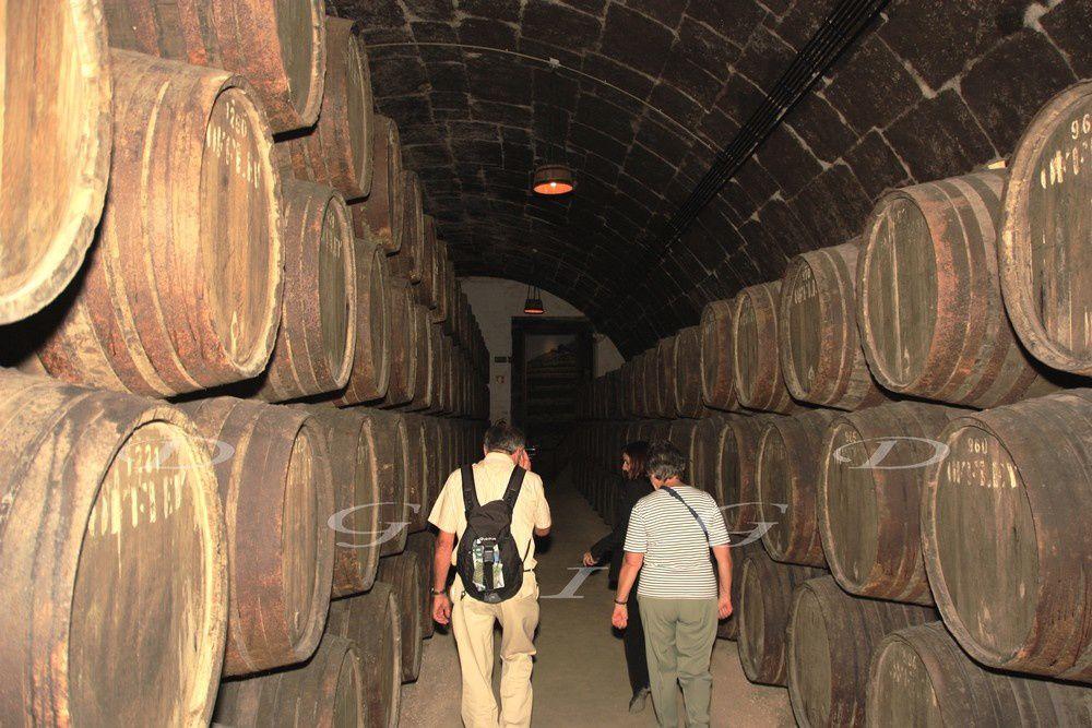 Passage à Millau avant d'attaquer notre périple en Espagne.Pays chargé d'histoire et d'architecture superbe