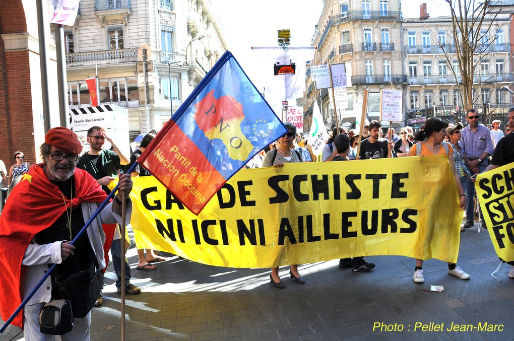 Manifestation à Toulouse pour l'Occitan.