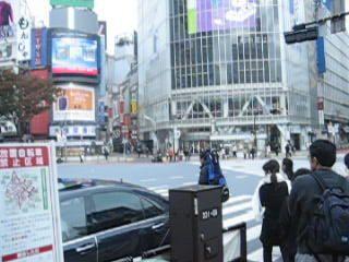 venez voir nos toutes prmi&egrave&#x3B;res impressions de tokyo...bient&ocirc&#x3B;t d'autres d'un genre bien diff&eacute&#x3B;rent!