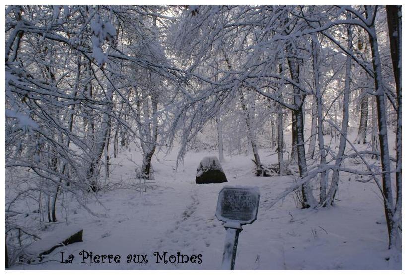 Album - MEUDON-NEIGE