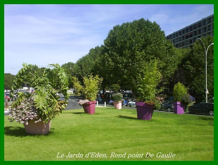 Album - Ronds-points-salon-des-arts