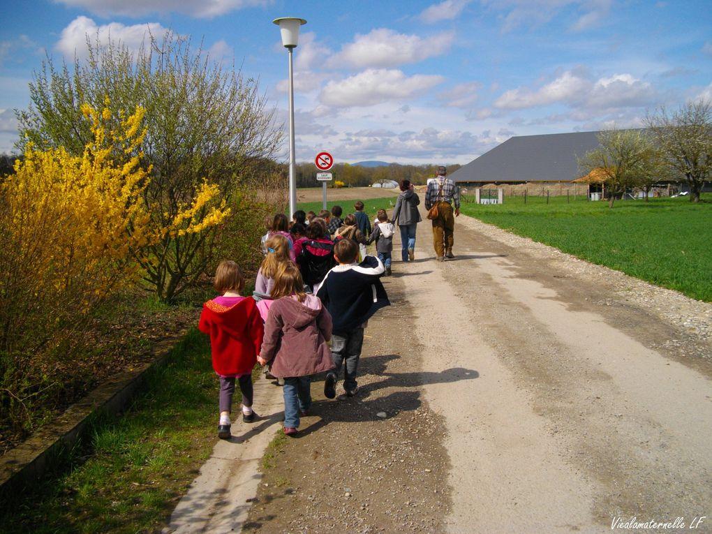 Photos année scolaire 2010/2011