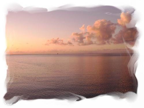 Promenade au fil des jours,des évènementsBallades sur ile tranquille ,sauvage,secrèteParfums,couleurs