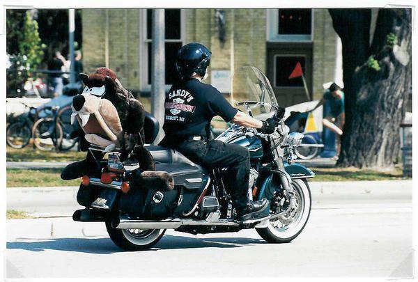 Harley's 100th