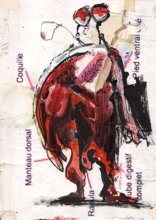 Album - KaosmoZ_Les-Aventures-de-Barnabé