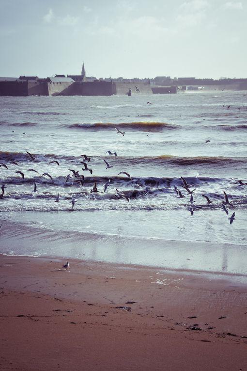 Album - La mer