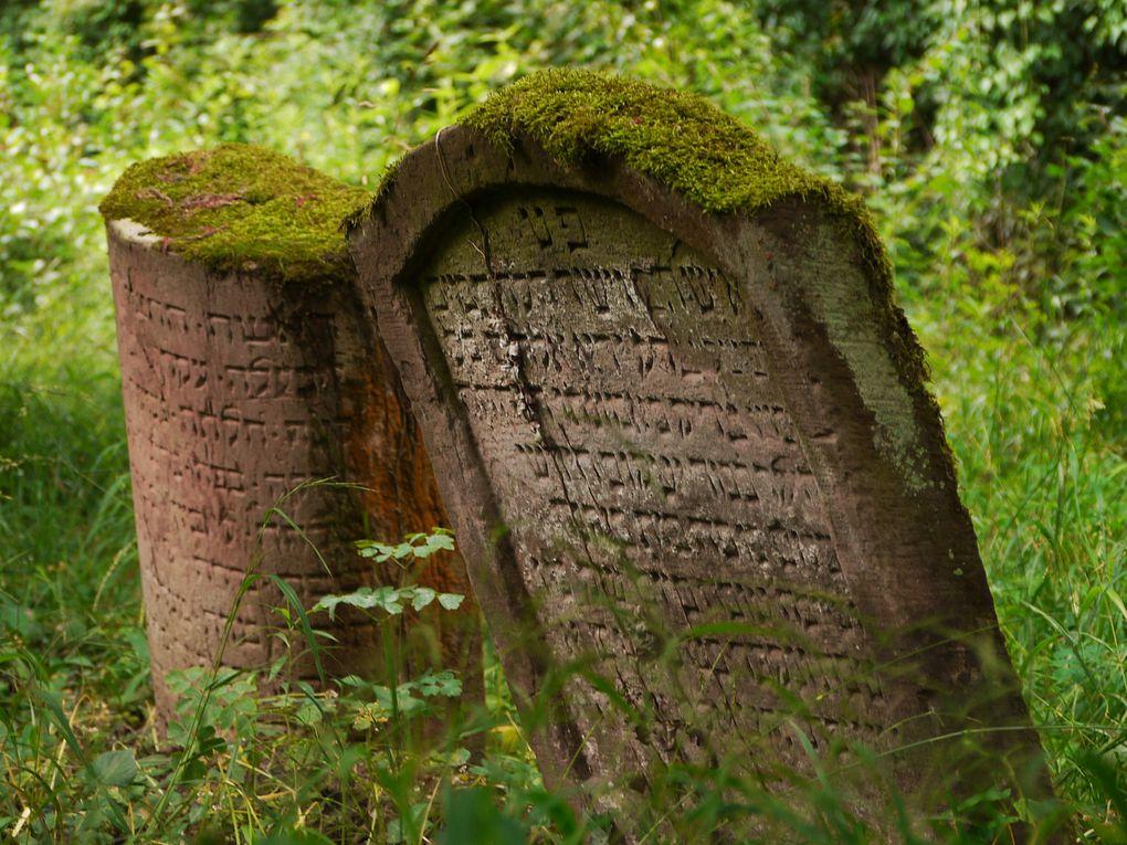 Album - (1) Le cimetière israélite de Mackenheim (67)