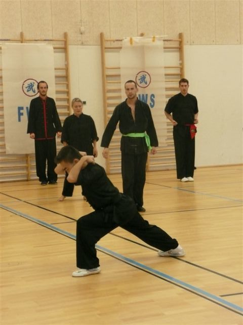 Tai jiquan Style Chen ( 9h-12h)Kung-Fu Nanquan ( 13h30-17h)