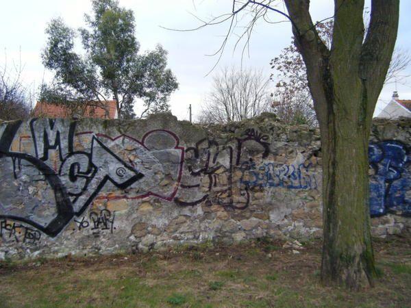 Il reste encore quelques murs à pêches à Bagnolet