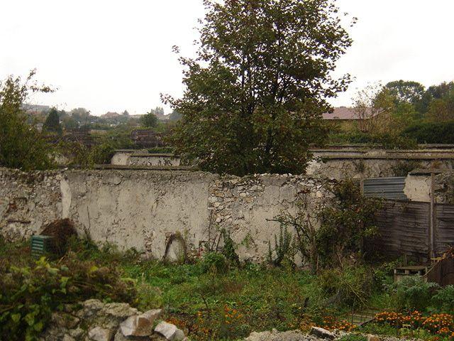 Photos des murs à pêches de Montreuil