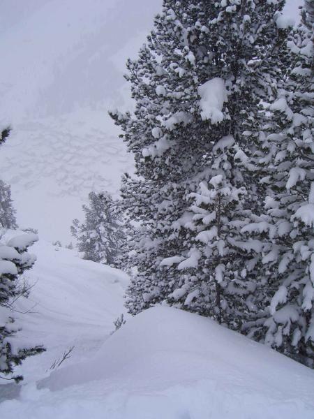 les photos de ski... (y en a d'autres dans les articles!!)