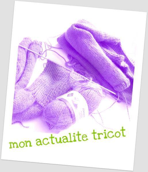 Mes ouvrages Tricot mais aussi quelques documents trouvés sur le Web.