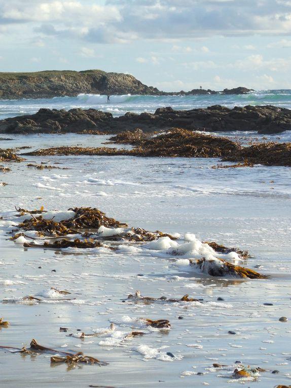 Les photos du mois de Décembre 2009, surtout des plages ...En bonus, j'en ai rajouté d'autres prises en aout et juillet que je n'avais pas eu le temps de mettre en ligne ... Amusez vous à trouver lesquelles ...