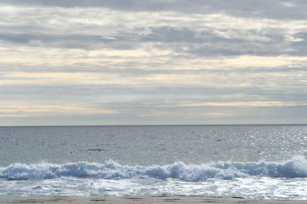 Mes photos de novembre... Le mois noir en breton !
