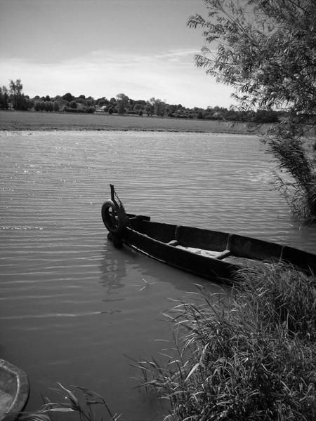 Album - Plain Cotentin et les marais