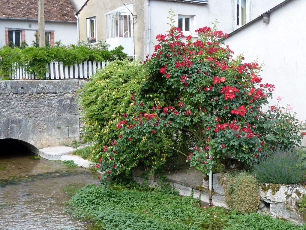 Suèvres est une ville de France, située dans le département Loir-et-Cher, de la région Centre.Les habitants de Suèvres sont appelés les Sodobriens, Sodobriennes.Les 1464 habitants de la commune vivent sur une superficie de 37 km² avec une de