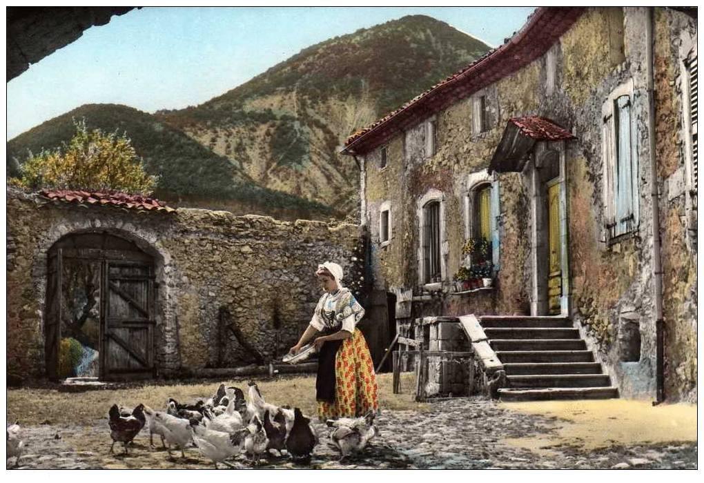 Quelques scènes de la vie provençale à travers des cartes postales.