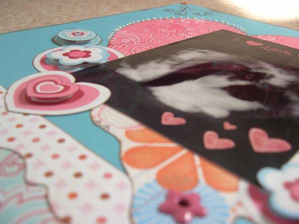 Album - Mes-pages-2008