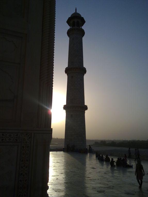 Album - Taj-Mahal