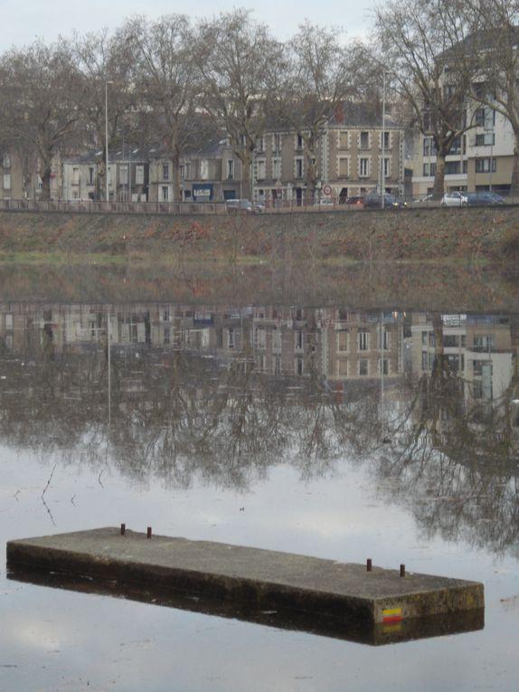 """Montrer en photos la beauté des paysages de la rivière """"Maine"""" à Angers"""