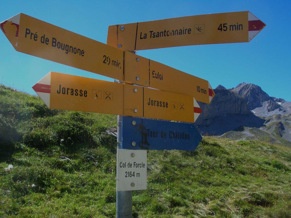 quelques photos prises au cours de mes randonnées, en région Fribourgeoise, Valaisanne, ou ailleurs... là où mes souliers me mènent...