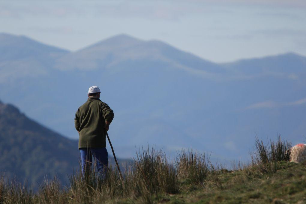 Montagne basque l'Arsamendi