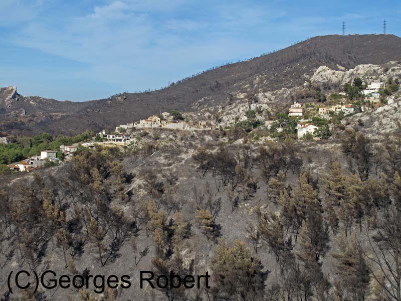 Quelques images de ce qu'il reste de l'incendie du 22 et 23 juillet à Marseille... Sans commentaires !