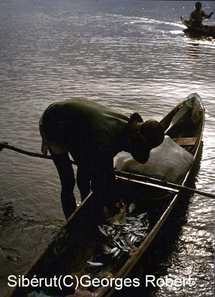 En 1989, j'avais fait un raid de trois semaines en solitaire sur l'île Sibérut en Indonésie. Une rencontre étonnante avec les Sakkudai dont la culture est malheureusement appelée à disparaître...