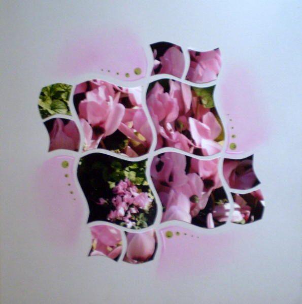 Album - galerie