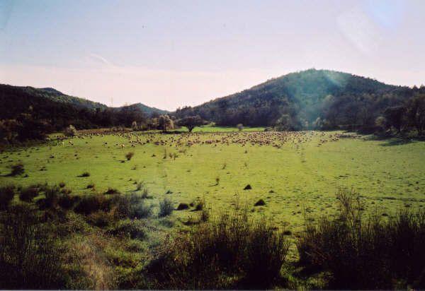 Album - En Provence