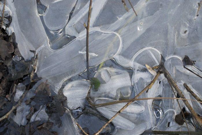 Album - glace-eau