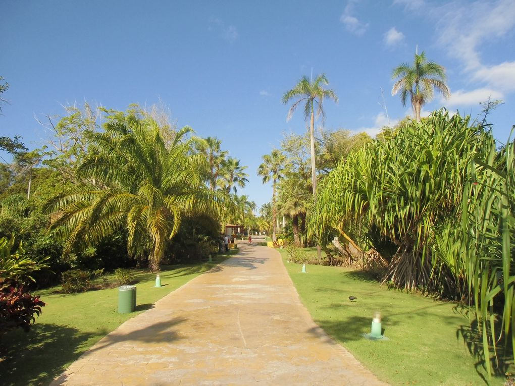 Séjour à Punta Cana au Tropical Princess du 16 au 23 février 2013.