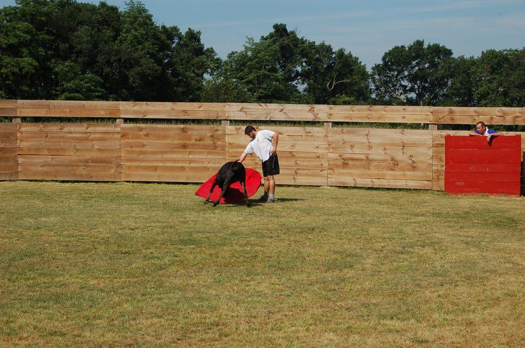 05 Juin 2010 Mimbaste. Une très belle journée ensolleillée pour apprendre encore un peu la technique du toréo. La journée c'est très déroulée dans une ambiance comme on les aime. Toujours aussi bienreçu par la famille Molas, avec encore une