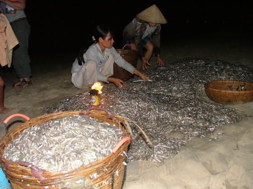 Album - Sud-Vietnam---Muy-N----Sa-gon---Delta-du-Mekong