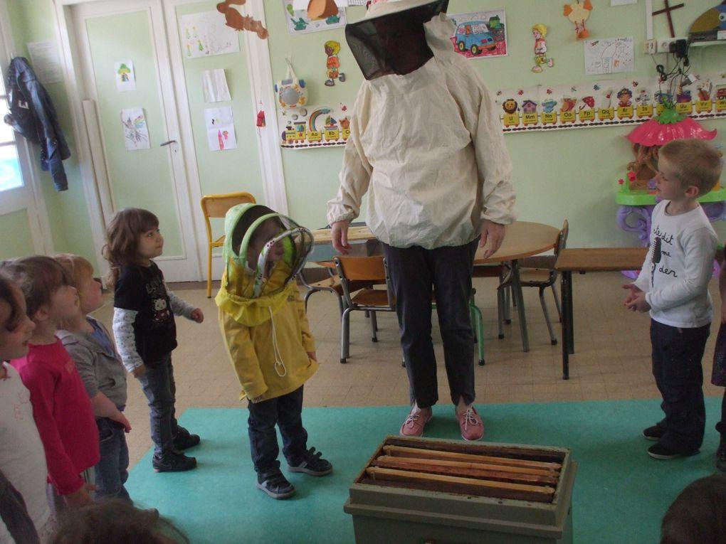 Z - Le-miel-et-les-abeilles 2013