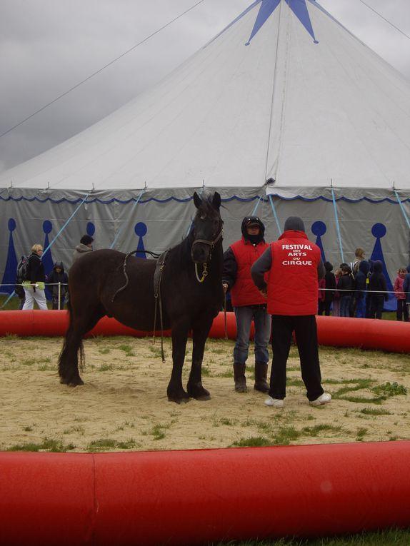 Z - Journée-cirque 2013