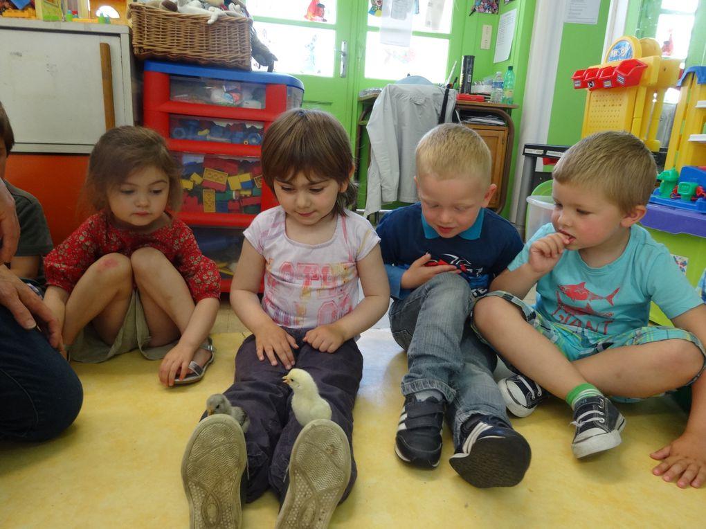 Z - Encore une visite en maternelle.... 2014
