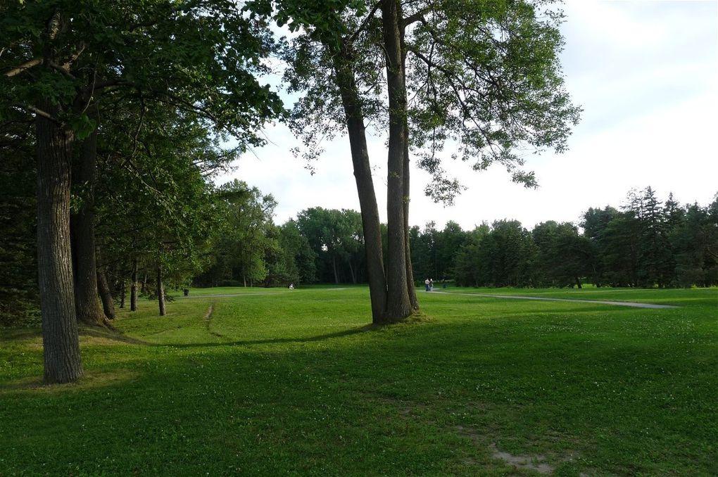 Les parcs Jarry, de Maisonneuve et du Mont-Royal durant le bel été 2009.