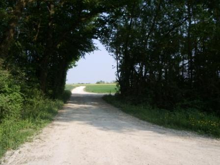 Au hasard entre m&eacute&#x3B;moire, paysage et patrimoine... de notre belle commune.