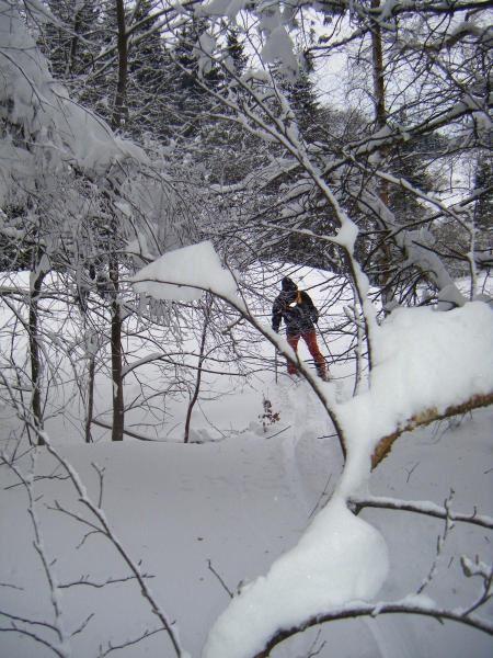 Album - Le-Bessat-hiver-2008-2009